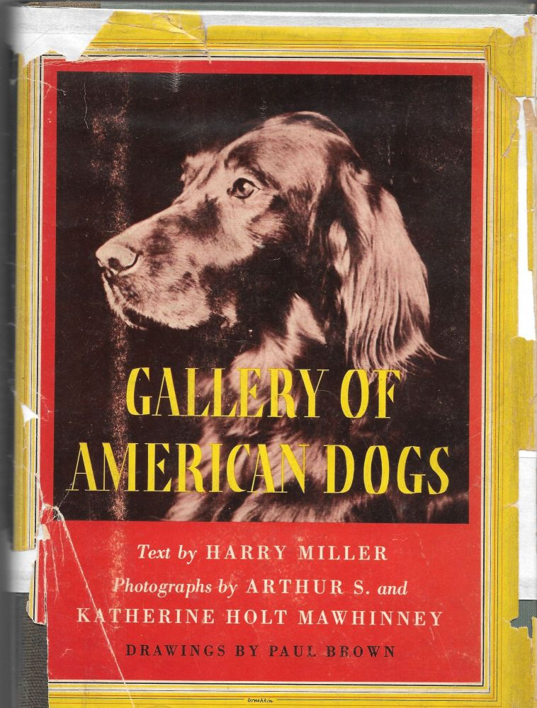 GALLERY OF AMERICAN DOGS. Harry Miller.