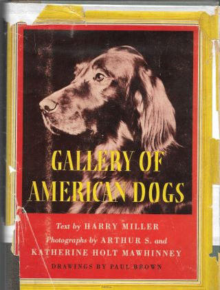 GALLERY OF AMERICAN DOGS. Harry Miller
